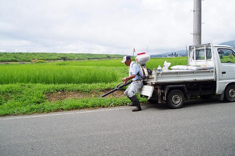 減農薬にこだわり農薬使用はたったの「1回」。安心のお米