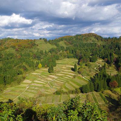 東下組地区はコシヒカリの栽培に適した自然環境