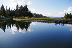 4.美しい水源と品質を安定させる貯水池