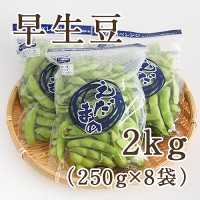 早生豆2kg(250g×8袋)