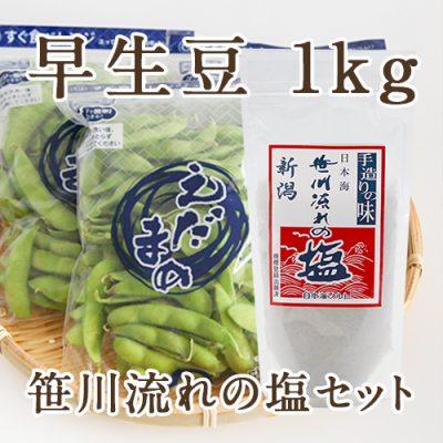 早生豆1kg(250g×4袋)と笹川流れの塩セット
