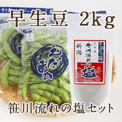 早生豆2kg(250g×8袋)と笹川流れの塩セット