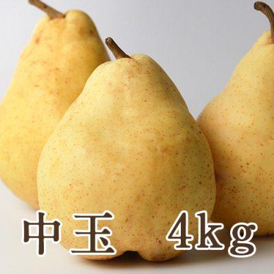 ル・レクチェ 4kg