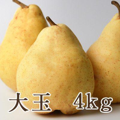 ル・レクチェ 大玉 4kg