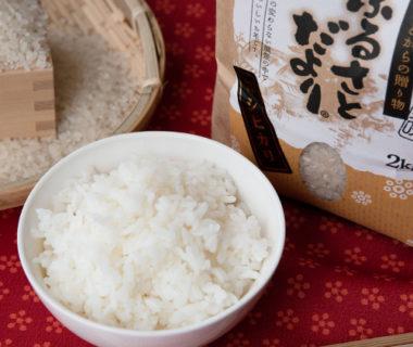 令和元年度米 新潟産コシヒカリ(特別栽培米・従来品種)