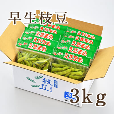 早生枝豆 3kg