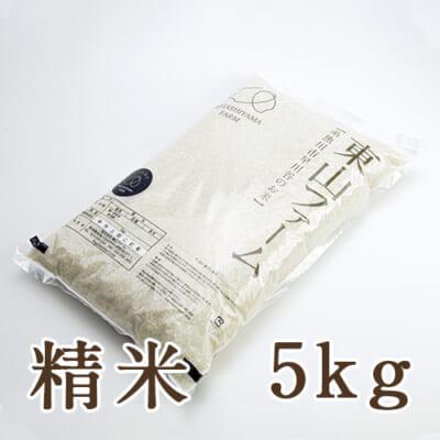 糸魚川 早川産 コシヒカリ 精米5kg