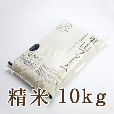 糸魚川 早川産 コシヒカリ 精米10kg