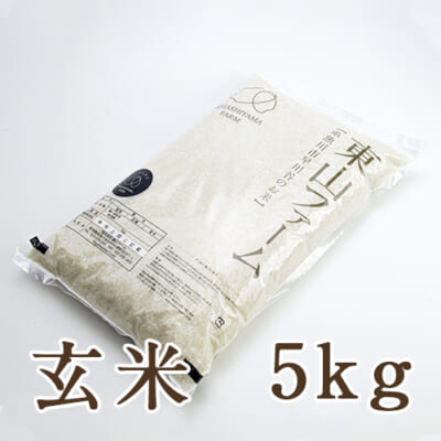 糸魚川 早川産 コシヒカリ 玄米5kg