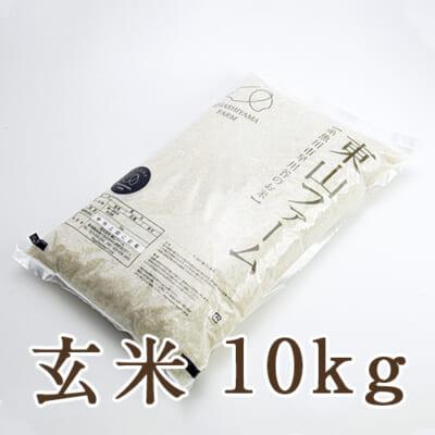糸魚川 早川産 コシヒカリ 玄米10kg
