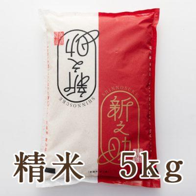 糸魚川 早川産 新之助 精米 5kg