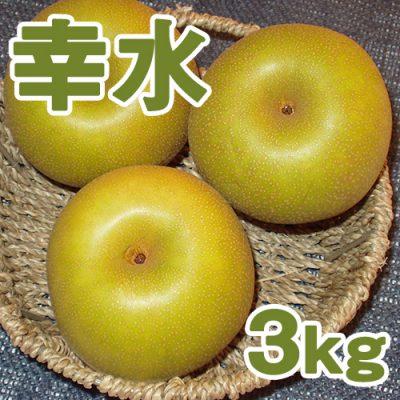 幸水3kg(6~8個入り)