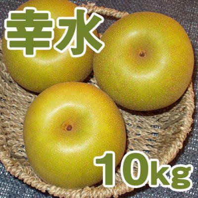 幸水10kg(20~28個入り)