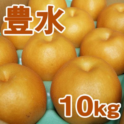 豊水10kg(20~28個入り)