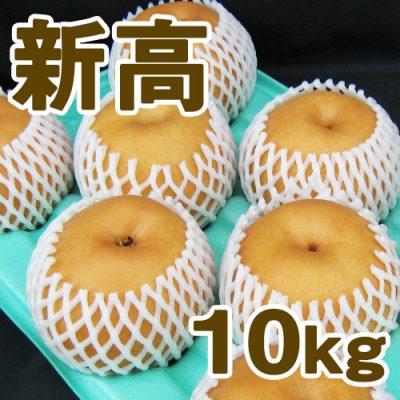 新高10kg(12~18個入り)