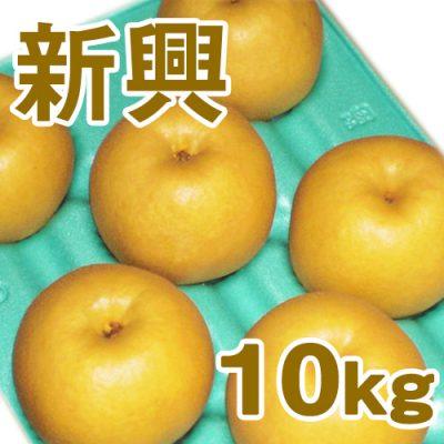 新興10kg(16~24個入り)