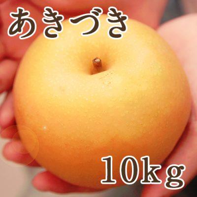 あきづき10kg(20~28個入り)