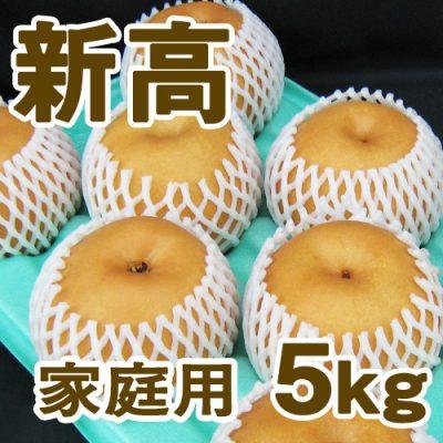 家庭用 新高5kg(6~9個入り)