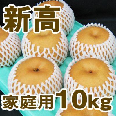 家庭用 新高10kg(12~18個入り)