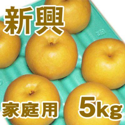 家庭用 新興5kg(8~12個入り)
