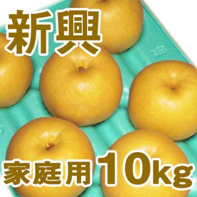 家庭用 新興10kg(16~24個入り)