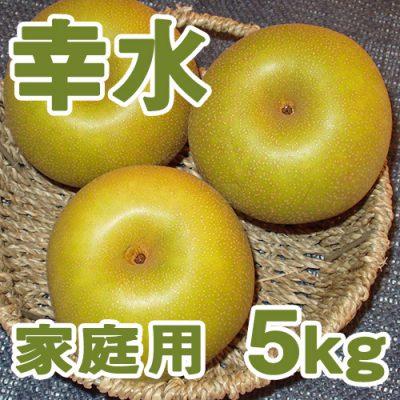 家庭用 幸水5kg(10~14個入り)