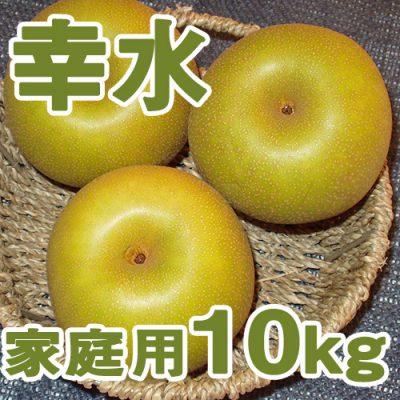 家庭用 幸水10kg(20~28個入り)