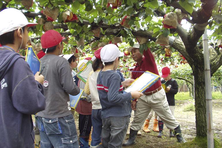 加茂の樋口農園の日本梨。人にも環境にも優しい梨作り