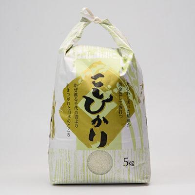令和元年度米 糸魚川 早川産 棚田栽培コシヒカリ「穂のひかり」