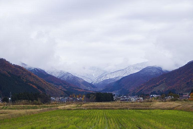 甘くてもっちりのお米を育む越後山脈