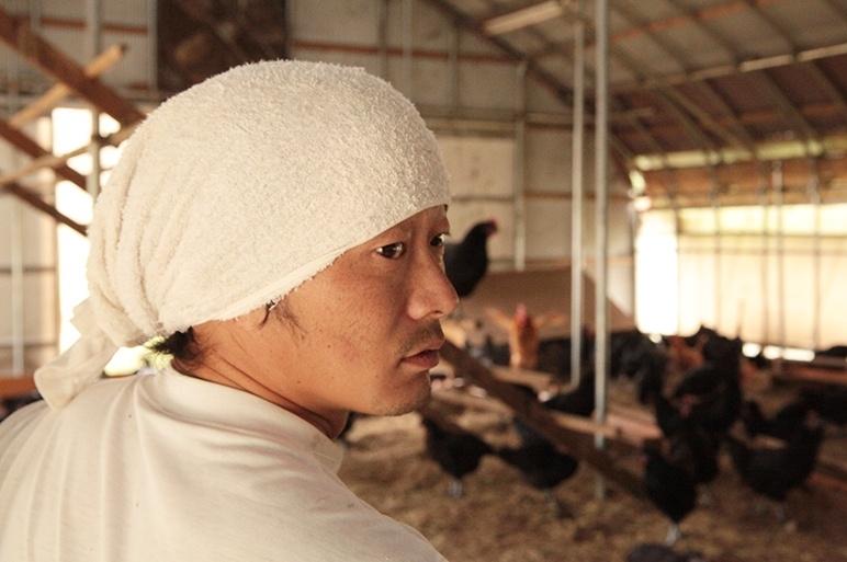 天然飼料にこだわった地鶏卵