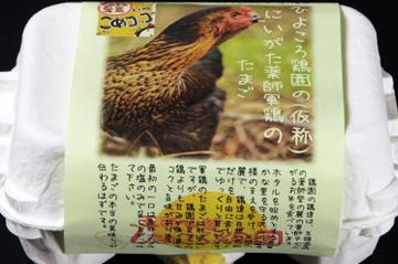 4.にいがた薬師軍鶏(シャモ)