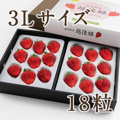越後姫 3Lサイズ 18粒(化粧箱入り)