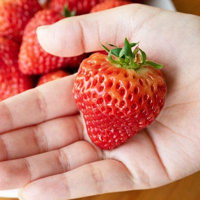 つやつやと美しい大粒苺