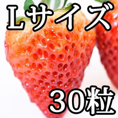越後姫Lサイズ(30粒入り)