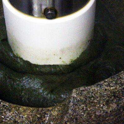 新潟県岩船産のヨモギをたっぷりつきこんでます