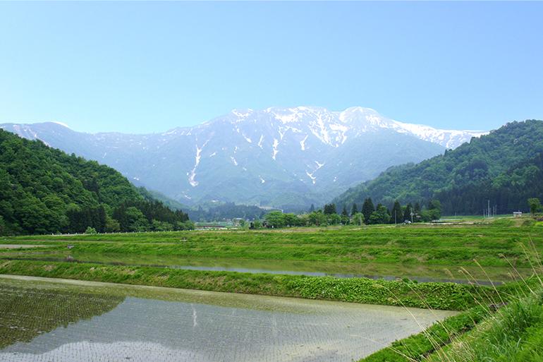 美味しいお米を育む南魚沼の農環境