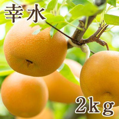 幸水 2kg(4~7玉)