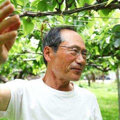 果樹を観察することを大切にぶどう作りと向き合う