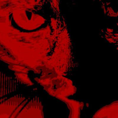 サビ猫ロック2020 赤サビ