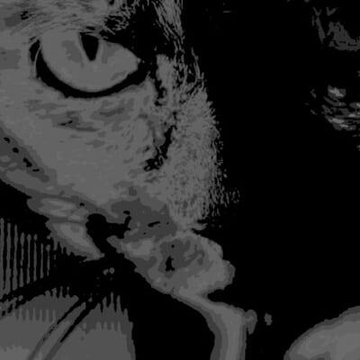 サビ猫ロック2020 黒サビ