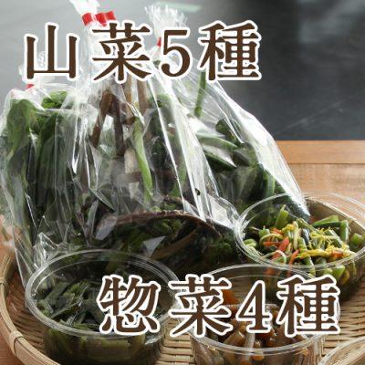 朝採り天然山菜5袋+山菜惣菜4種 詰め合わせ