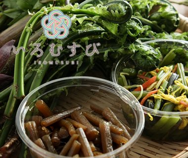 新潟産 朝採り天然山菜&惣菜セット