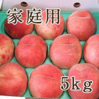 【家庭用】桃 5kg