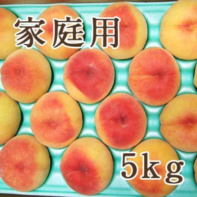 【家庭用】黄桃 5kg