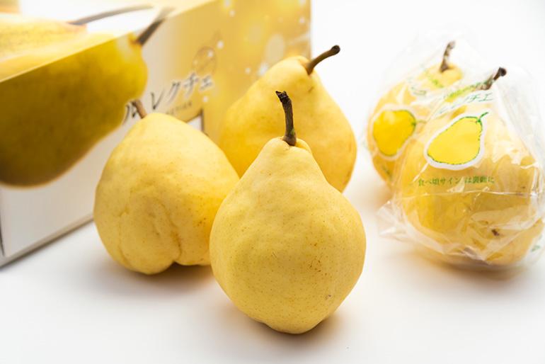 新潟お歳暮の大定番!全国でもめずらしい特産フルーツです