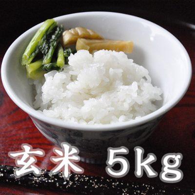 魚沼津南産コシヒカリ(玄米)5kg