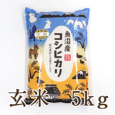 中魚沼産コシヒカリ 金印 玄米5kg