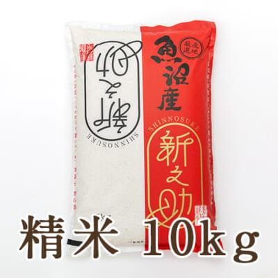 中魚沼産 新之助 精米10kg