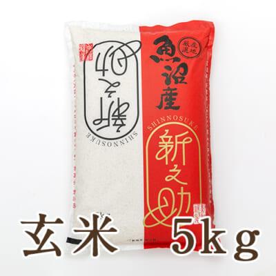 中魚沼産 新之助 玄米5kg
